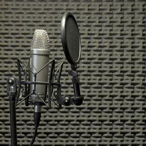 audio_records